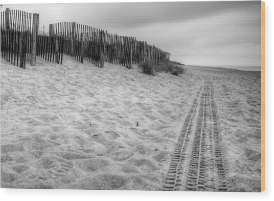 Snow Fence On The Beach Wood Print