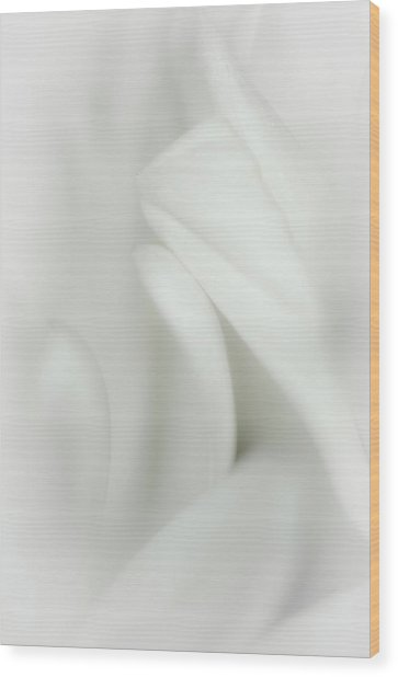 Snuggle Wood Print