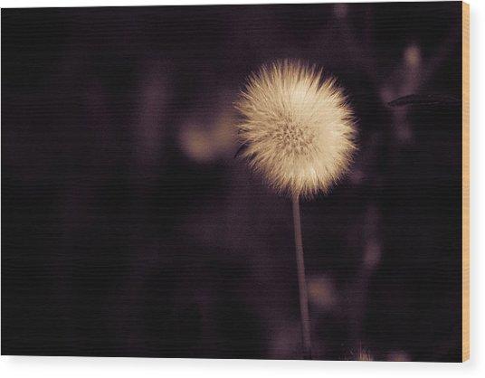 Tuft Wood Print
