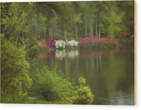 Spring Daze Wood Print