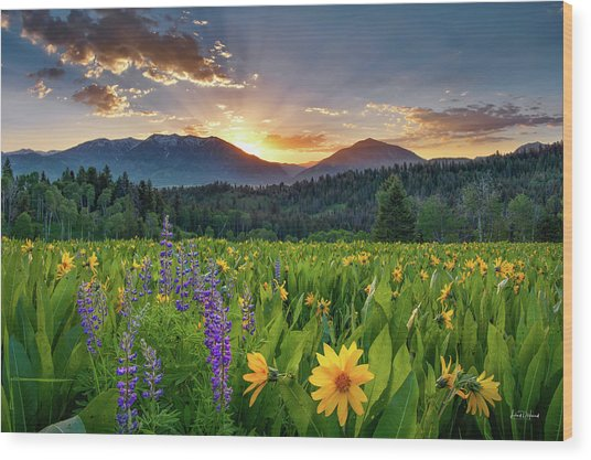 Spring's Delight Wood Print by Leland D Howard