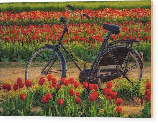 Wood Print featuring the photograph Springtime Tulips And Bike by Susan Candelario