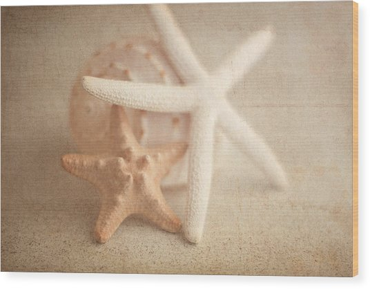 Starfish Still Life Wood Print