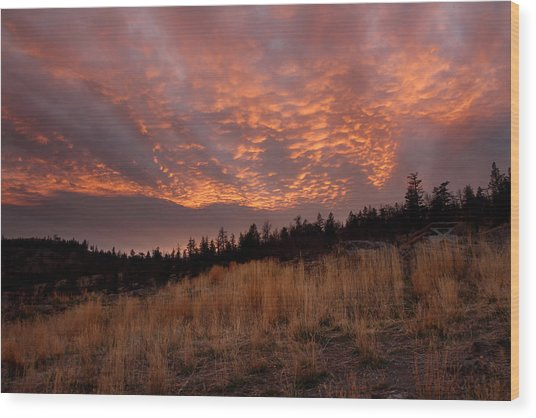 Steelhead Provincial Park Sunset Wood Print by Pierre Leclerc Photography