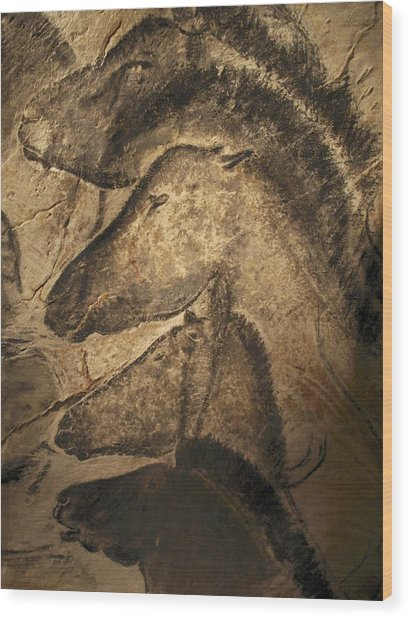 Stone-age Cave Paintings, Chauvet, France Wood Print