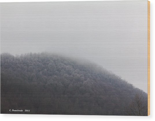 Stormy Day Wood Print by Carolyn Postelwait