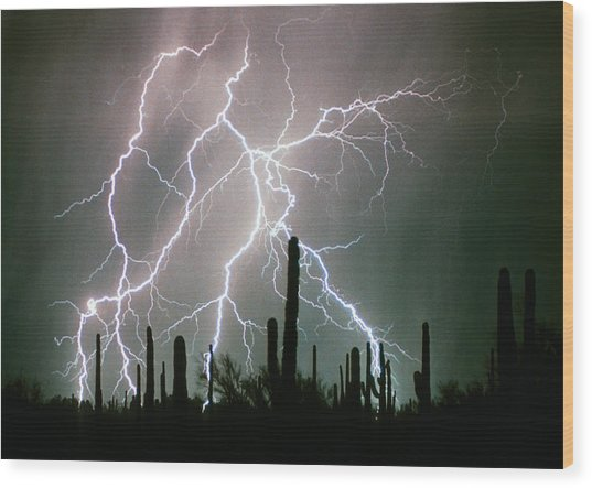 Striking Photography Wood Print