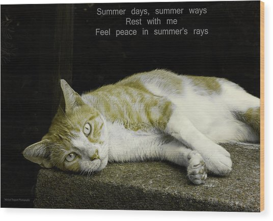 Summer Days Wood Print by Michael Taggart II