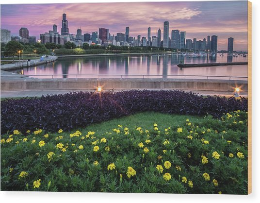 summer flowers and Chicago skyline Wood Print