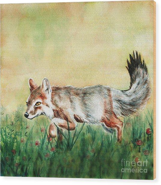 Summer Fox Wood Print by Antony Galbraith