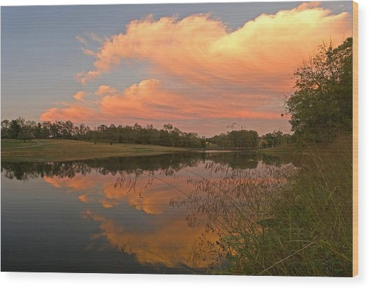 Sunset At The Pond Wood Print