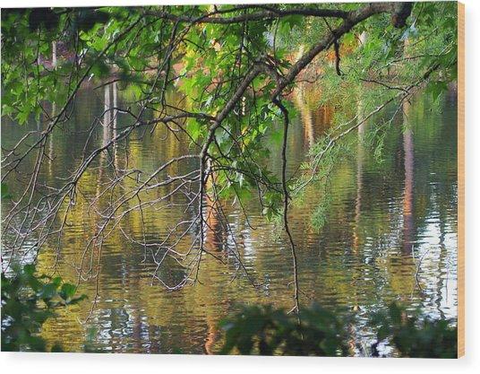 Swan Lake Wood Print by Don Prioleau