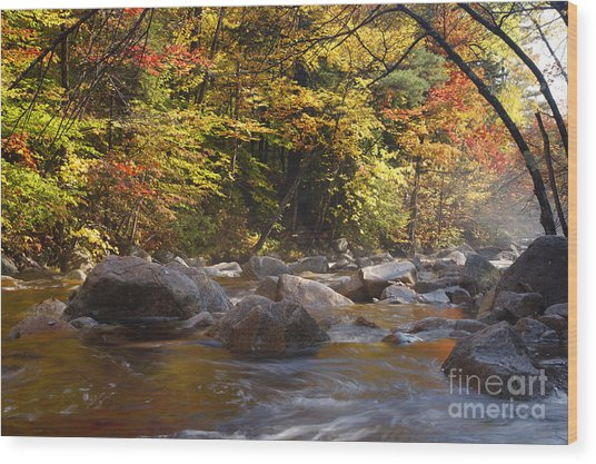 Swift River - White Mountains New Hampshire Usa Wood Print