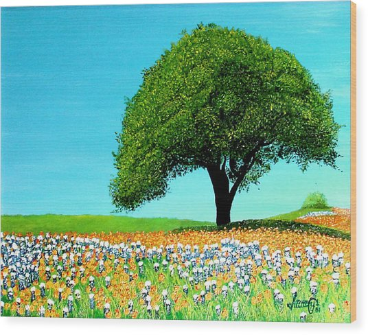 Texas Hill Country Wood Print by JoeRay Kelley