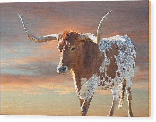 Texas Icon Wood Print