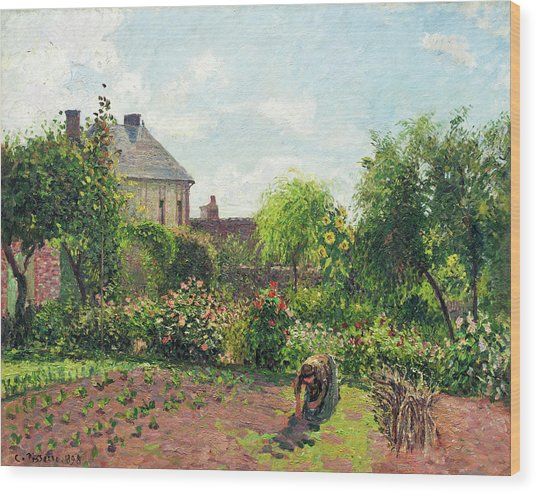 The Artist's Garden At Eragny Wood Print