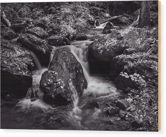 The Creek In Black And White Wood Print