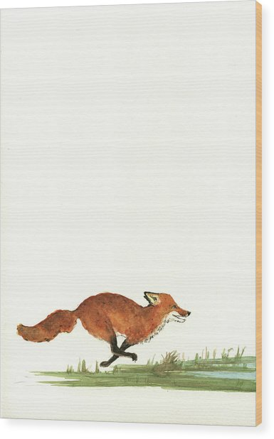 The Fox And The Pelicans Wood Print