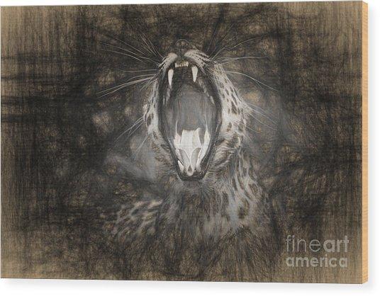 The Leopard's Tongue Rolling Roar IIi Wood Print