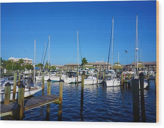 The Naples City Dock Wood Print