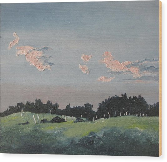 The Pink Clouds Wood Print by Francois Fournier