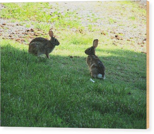 The Rabbit Dance Wood Print