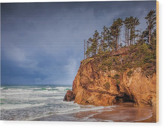 The Remote Coast Wood Print by Andrew Soundarajan