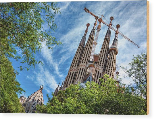 The Sagrada Familia Wood Print