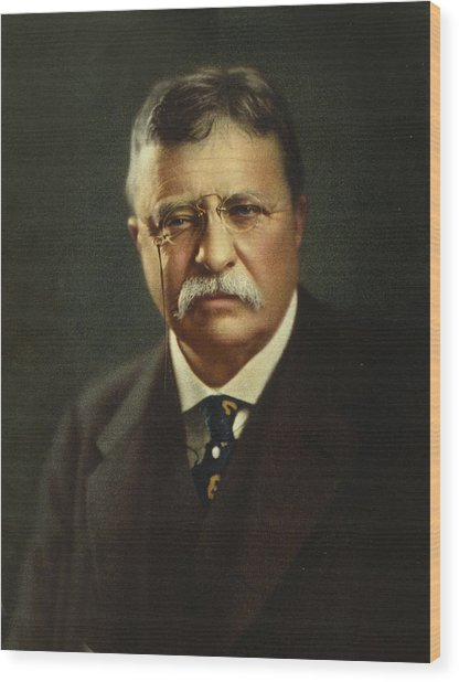 Theodore Roosevelt - President Of The United States Wood Print