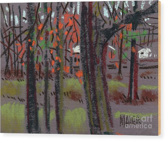 Thru The Trees Wood Print by Donald Maier