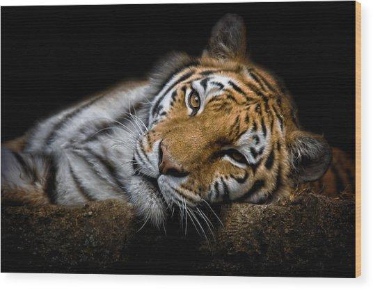 Tiger 2  Wood Print