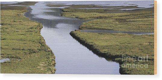 Tomales Marsh Wood Print