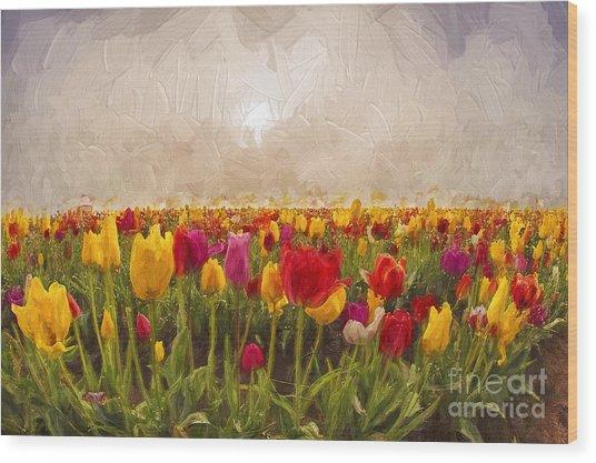 Tulip Field Wood Print