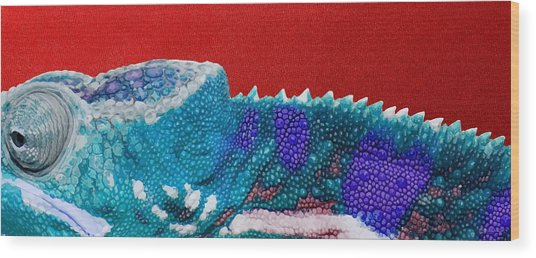 Turquoise Chameleon On Red Wood Print
