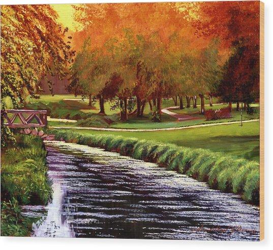 Twilight Golf Wood Print by David Lloyd Glover