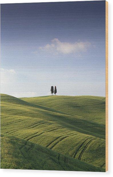 Twin Cypresses Wood Print by Michael Hudson