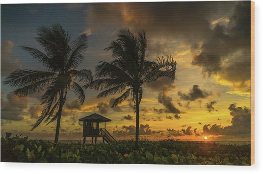 Two Palm Sunrise Delray Beach Florida Wood Print