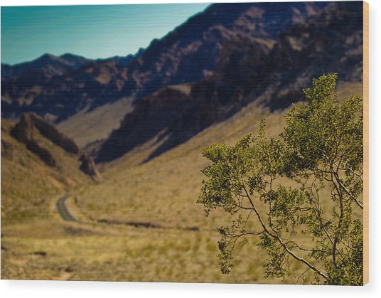 Valley Of Fire Nevada Wood Print by Patrick  Flynn