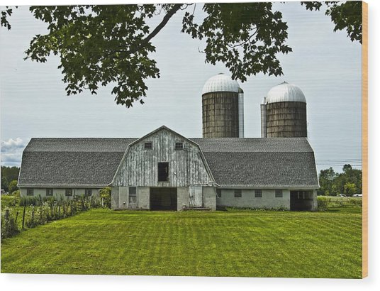 Vienna Barn 2 Wood Print by Pat Carosone