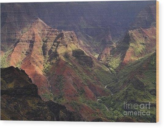 Waimea Canyon Wood Print by Neil Doren