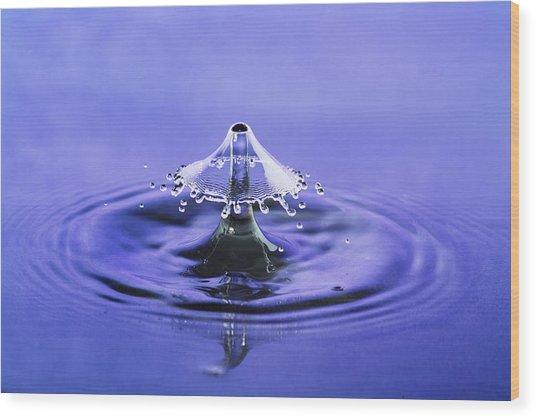 Water Drop Umbrella Wood Print