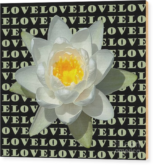Water Lily Love Wood Print