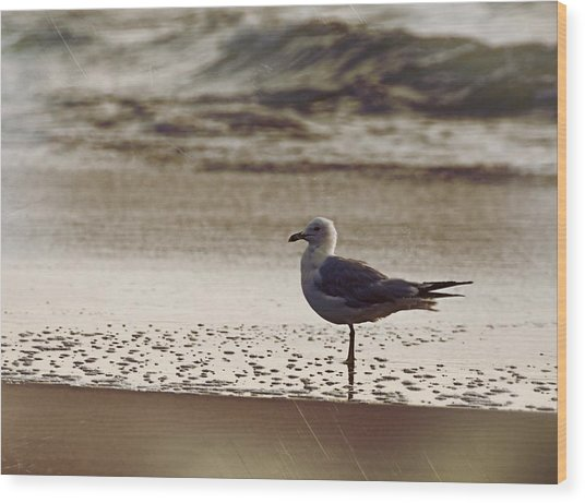 Water Wading Wood Print by JAMART Photography