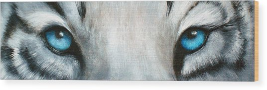 Whos Watching Who...white Tiger Wood Print by Darlene Green