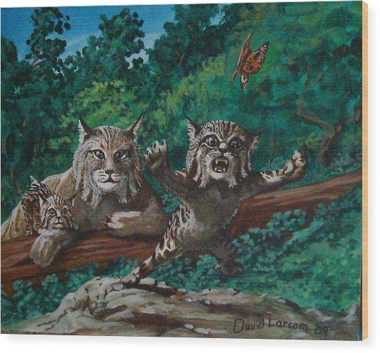 Wild Bob Wood Print by David  Larcom