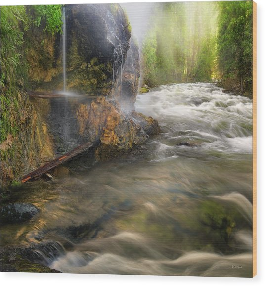 Wood Print featuring the photograph Wilderness Hot Springs by Leland D Howard