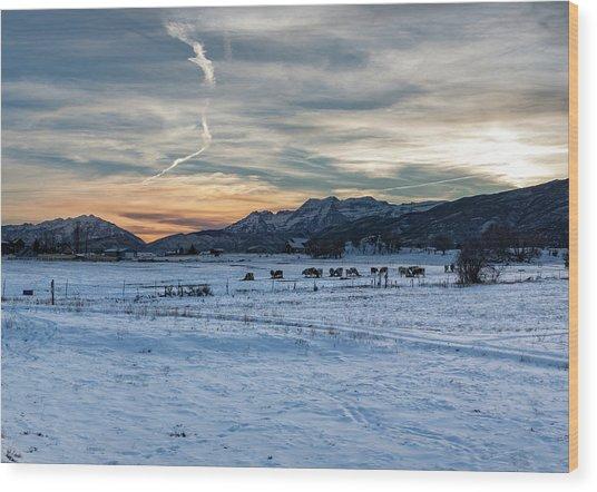 Winter Range Wood Print
