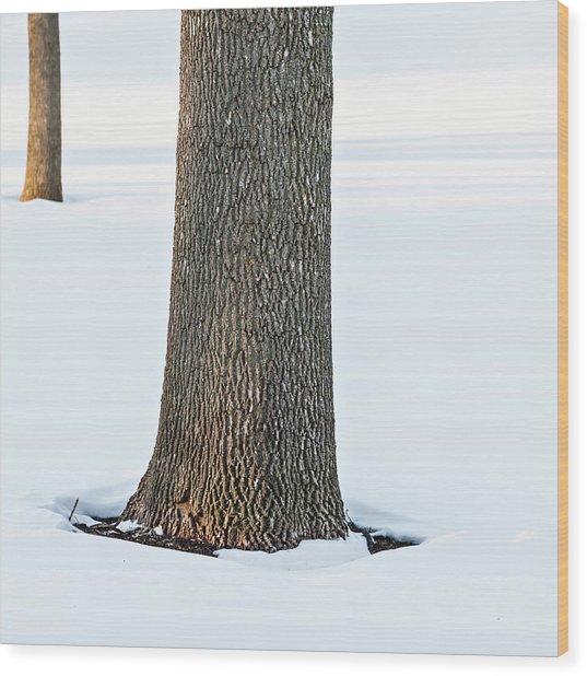 Winter Scene - Abstract Wood Print