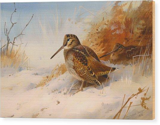 Winter Woodcock Wood Print