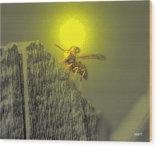 Yellow Jacket Blues Wood Print